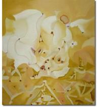 Aaron Sinift