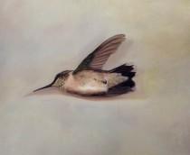 "Tilly Woodward""Little Wing"""